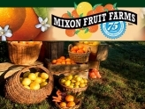 Arts and Crafts Saturday, Mixon Fruit Farms