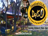 "Dakin Dairy's ""Festival 4 Life"""